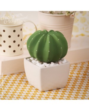 Spotty Cactus Fragrance Diffuser