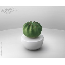 Cactus Fragrance Diffuser ( set of 2 )