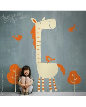 Horse Growth Chart Decal