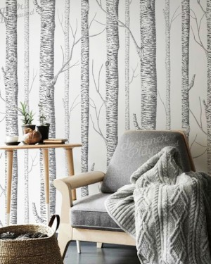 Birch Trees Wallpaper - Peel & Stick