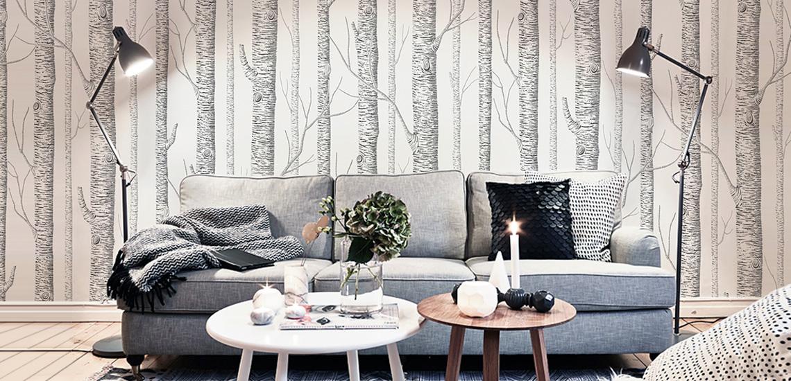 banner-main-DP-birch_forest_tree_wallpaper